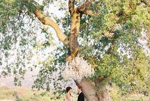 Small wedding renewal ideas