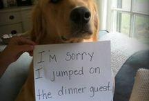 he didn't do it... I knew it... :D