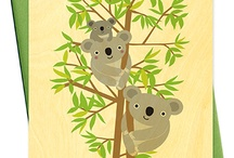 Koala tresors