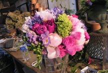 Flowers beautiful