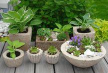 Beton-Pflanzer