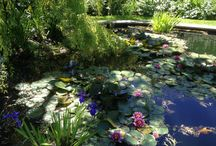 The secret garden / #jewelry #leopizzo #leopizzogioielli #leopizzojewelry #flowers #garden #secretgarden