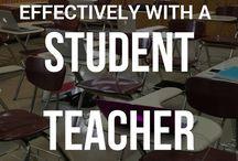 cooperating teacher