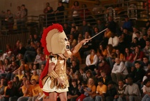 #OurCrusaders / Alvernia, a classic, liberal arts institution located in Reading, PA embraces the Crusader as the mascot.