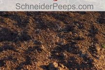 soil n compost