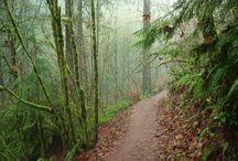Hiking MN