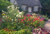 Tuinen /gardens