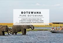 Experience - Pure Botswana / Experience the best of Botswana. Explore the diversity and beauty of the Okavango Delta, Chief's Island and the Chobe National Park on this amazing 6 NIGHT / 7 DAY SAFARI EXPERIENCE.