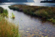 Linku2 Fiordland, New Zealand