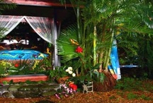Camper ~ Tropical Dreams / Over the top Tiki Hut decor...pink Flamingos, grass skirts, colorful birds, pretty flowers...ideas for a beach-themed camper or cabin. / by Robin Mundy