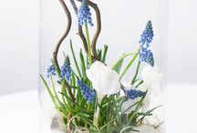 Déco : Inspiration Printemps / Idées pour une décoration intérieure printanières - Inspirations printemps avec des fleurs, des bulbes, des oiseaux..r