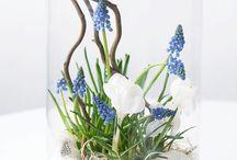 Tavasz, Hùsvét