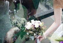 Marine Biology Wedding