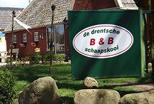 www.drentscheschaapskooi.nl