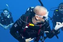 PADI 5 Star Instructor Development Centre / Become a PADI Professional Diving Instructor in Koh Samui Thailand with Divemaster Course at The Dive Academy English owned and managed PADI 5 Star Dive Centre on Koh Samui.