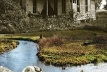 Old Houses to Remember Where there Was Once Life / by Diane McCarty Potts