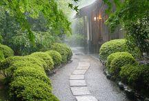 Ogród inspiracje / projektowanie ogrodów