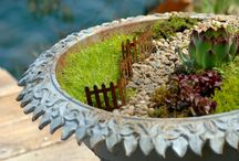 Fairy Gardens / mini farie fary gardens
