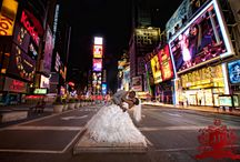 nyc styled shoot inspiration / by donae cotton photography