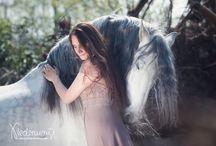 Harmony with a horses