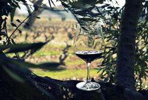Rioja Wine / Discovery of Rioja Wine during Rioja Wine Not? Wine Tour