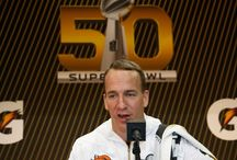 Bet on Super Bowl 50 / All type of bets for SB50