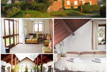 Hall Farm Cottages / A little bit of everything at our Norfolk holiday cottages.....