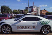 My Forever Dream
