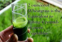Wheatgrass is Powerful