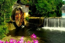 Pigeon Forge, TN  / This album is dedicated to our lovely city of Pigeon Forge, TN.