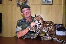 CMA / fotos Comando Militar da Amazônia