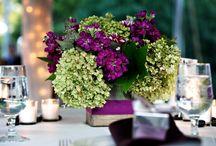 Purple Night-Decoration