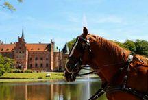 Castles of Denmark