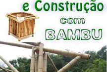bambú curso