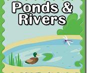 Education ~ Pond Life