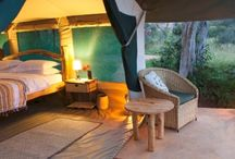 Africa - Where to Stay? / In Africa there are different types of accommodation you can choose from for your holiday. These range from lodges, camps, private houses and mobile safaris, all giving you different experiences.