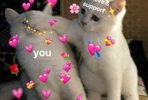 Love & Support Meme Thingies