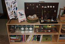 Reggio inspired classroom
