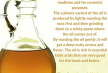 Culinary Argan Oil / Have you tried our 100% organic, cold pressed, virgin culinary argan oil? You should! It super tasty, and super healthy, and you just have to try it! On this board, you will find all about it - facts about its qualities and health benefits, recipes, advice and much more!
