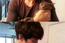 Junho the cat daddy