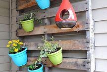 outside ideas/garden