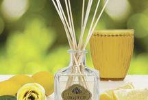Difusores de Aroma / Los elegantes Difusores de Aroma Biogreen fueron creados para que puedas decorar agradablemente tus ambientes y acompañar tus momentos con toda la calidad y persistencia de nuestros aromas. ¡Transformá con elegancia cada rincón y disfrutá de una experiencia de mágico deleite!