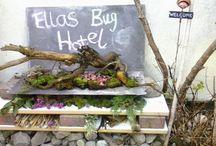 Ella's Board