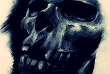 skull / skull,cranio,caveira