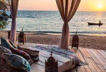 Beach bed / Future