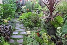 Garden Path Ideas / by deb stclaire