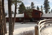 Swan Hill Bed and Breakfast and Flathead Lake Cabin / Swan Hill Bed and Breakfast in Polson, Mt on FLathead Lake