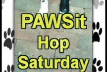 PAWSit Hop Saturday - for Dogs and Dog Lovers! / This Dog PAWSitive Tidbits blog hop is for dog lovers to link up their blog posts each week. List runs from week to week and all participants will be featured here. Join us: http://www.dogpawsitivetidbits.com/