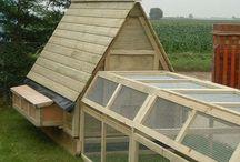 Farming Planning / by Linda Darlington-Bath