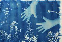 Cianotipo / Cianotipia es un antiguo procedimiento fotográfico monocromo, donde se consigue una copia original de color azul.  Descubrí en esta técnica fotográfica alternativa una expresión artística, el encuentro es dinámico al acuñar mi cuerpo sobre el soporte elegido, el fundir los   objetos tomados de la naturaleza y crear una superficie misteriosa reflexionada.  Apacible contemplo mis obras impresas al aire libre bajo la luz del sol.